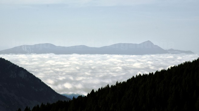 fogturbulence